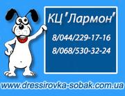 Гостиница для собак (передержка)