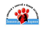 Стрижка собак в Киеве